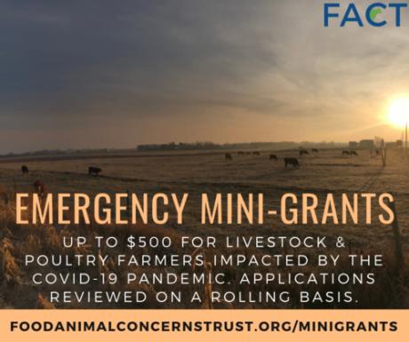 Emergency Mini-grants for Livestock Farmers
