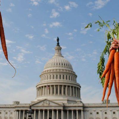 NSAC-carrots-capitol-
