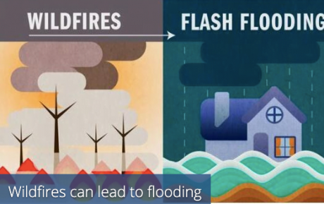Wildfires: Flood Insurance