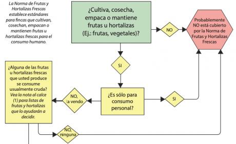 FSMA Diagrama de flujo Español