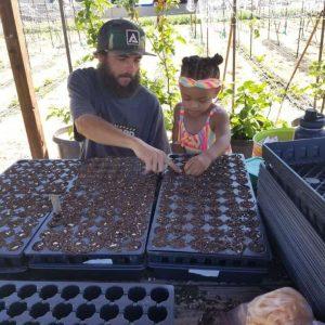 We Grow Urban Farm 2