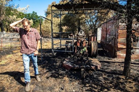 California Farmers Face a Long Road to Recovery After Wildfires