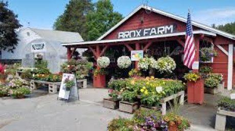 COVID-19 FAQ for Farm Stands