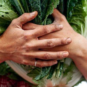 hands-vegitables-home