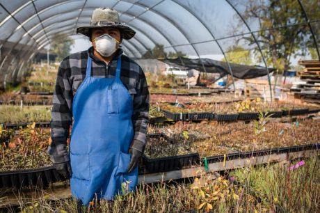Guidance for Limited Reuse of N95 Filtering Respirators in Agriculture